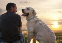 Se sei felice il tuo cane lo sa