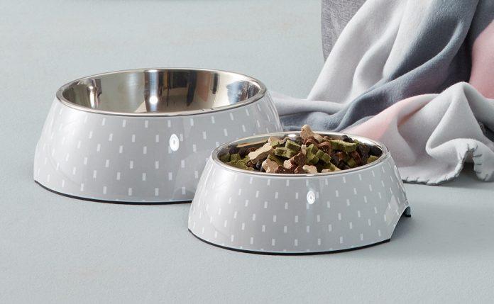 Ciotole per cani e gatti: quali utilizzare per il cibo e l'acqua